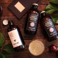 probiotiskā tējas sēne Kombucha / Dzīvības Dzēriens